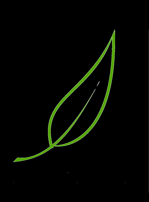 Aleppo Olivenöl Seife